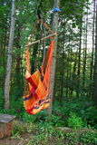 Hammock in the forest. Hammock hanging from the tree in the forest Royalty Free Stock Photography