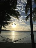 Hammock fra le palme Immagini Stock