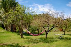 Hammock in the garden of family hotel in Provence Royalty Free Stock Photography
