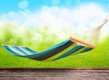 Hammock in garden Royalty Free Stock Photo