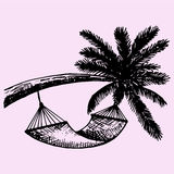 Hammock hanging on palm Stock Images