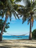 Hammock hanging in between palm trees overlooking the sea royalty free stock photography