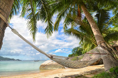 Hammock hanging between palm trees at the sandy beach and sea coast. Tropical paradise Stock Photography
