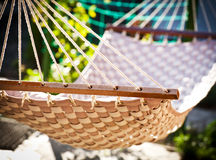 Hammock hanging in the sunny yard Royalty Free Stock Photography