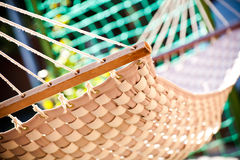 Hammock hanging in the sunny yard Royalty Free Stock Photos