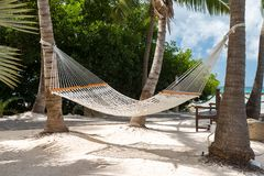 Rope hammocks suspended on tropical island awaiting traveler to relax in. This hammock invites relaxation and some leisure time in some wonderful, tropical Stock Photos