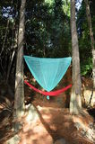 Hammock in the jungle Royalty Free Stock Images