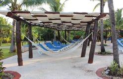 Hammock on a Mexico resort. Barcelo Maya Colonial Resort, Riviera Maya Royalty Free Stock Images