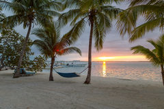 Hammock na praia tropical Foto de Stock