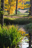 Hammock near the pond in autumn Park. A hammock near the pond in autumn Park Stock Photo