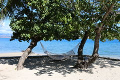 Hammock and ocean Stock Photography