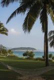 Hammock and Palm Royalty Free Stock Photo