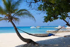 Hammock on palm tree. Relaxing hammock in front of white beach with some boats Stock Images