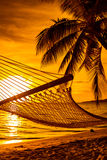 Hammock on a palm tree during beautiful sunset on Fiji Islands Royalty Free Stock Photos