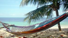 Hammock and palm trees on the beach. slow motion. 1920x1080. Hammock and palm trees on the beach stock video footage