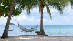 Hammock and palm trees on the beach stock footage