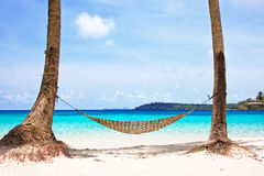 Hammock between palm trees. On beautiful tropical beach Stock Photography