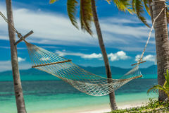 Hammock between palm trees Royalty Free Stock Photo