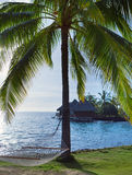 Hammock between palm trees and the sea Stock Photo