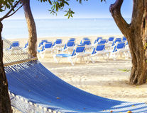 Hammock between palm trees and the sea.  Royalty Free Stock Images