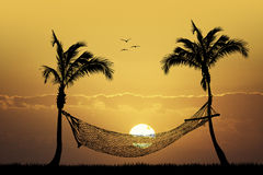 Hammock between palm trees at sunset Royalty Free Stock Photography