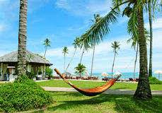 Hammock between palm trees on tropical beach Royalty Free Stock Images
