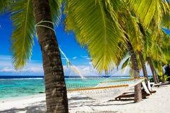 Hammock between palm trees on tropical beach. Empty hammock between palm trees on tropical beach Royalty Free Stock Photo
