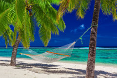 Hammock between palm trees on tropical beach of Rarotonga, Cook Royalty Free Stock Photos