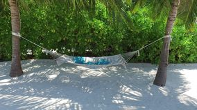 Hammock between palm trees on tropical beach stock video