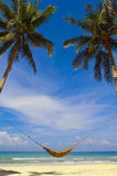 Hammock and palms. A hammock on a beach hanging between two large palm trees with the sea in the background Royalty Free Stock Photography
