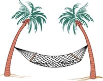 HAMMOCK PALMS Royalty Free Stock Images