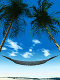 Hammock between palmtrees Royalty Free Stock Images
