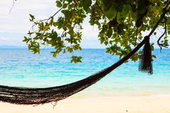 Hammock in paradise beach Stock Image