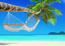 Hammock on perfect palm beach Baie Lazare, Mahe island, Seychell Stock Images