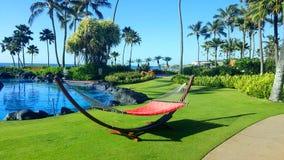 Hammock by pool in resort royalty free stock image