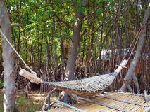 Hammock rattan. Hanging on tree with bamboo litter in mangrove forest Royalty Free Stock Photo
