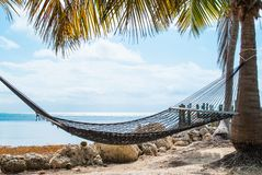 Hammock by the Sea. Hammock Hanging on a Palm Tree by the Sea Royalty Free Stock Photo