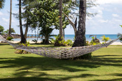Hammock on the seashore Stock Images