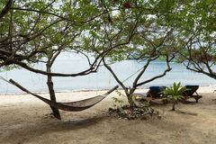 Hammock in the shade of a tree on a beach Stock Images