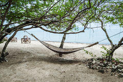 Hammock in the shade of a tree Stock Photography