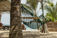Hammock in the shades of palm trees on the beach of a resort Stock Images