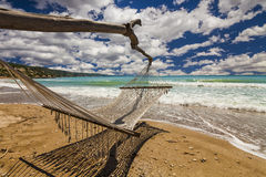 Hammock on the shore Stock Photo