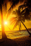 Hammock silhouette with palm trees on a beautiful at sunset stock photos