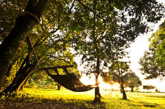 Hammock in the Sun Royalty Free Stock Image
