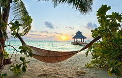 Hammock and sunset. Empty hammock in the tropical beach in the Maldives at sunset Stock Images