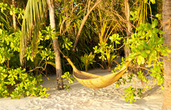 Hammock and sunset Royalty Free Stock Photo