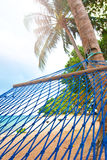 Hammock swaying by the palm tree at a seaside resort Stock Image