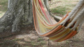 Hammock swinging in the wind stock video