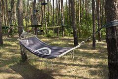 Hammock tied to trees in the forest. Forest. the trunk of trees tied the hammock. resting-place Royalty Free Stock Photos