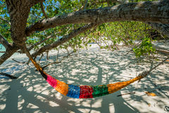 Hammock Tree Straps hang over the beach under shade day time wid. Hammock Tree Straps hang over the beach under shade, nobody on day time wide shot background at Stock Image